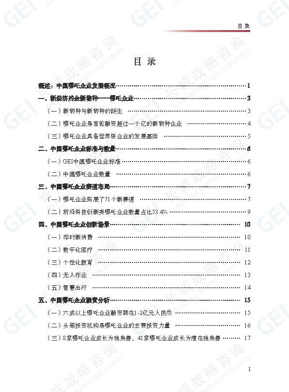 哪吒企业研究报告-jp水印(1)_页面_05.jpg