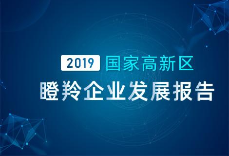 国家高新区瞪羚企业发展报告(2019)