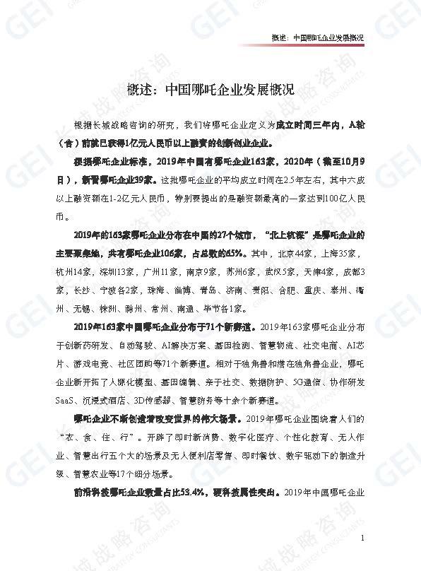 哪吒企业研究报告-jp水印(1)_页面_07.jpg