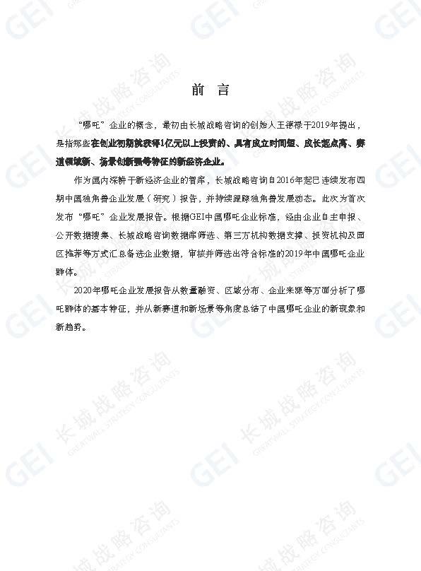 哪吒企业研究报告-jp水印(1)_页面_03.jpg